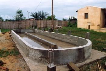 Construire Un Bassin De Jardin En Parpaing Bassin De Jardin